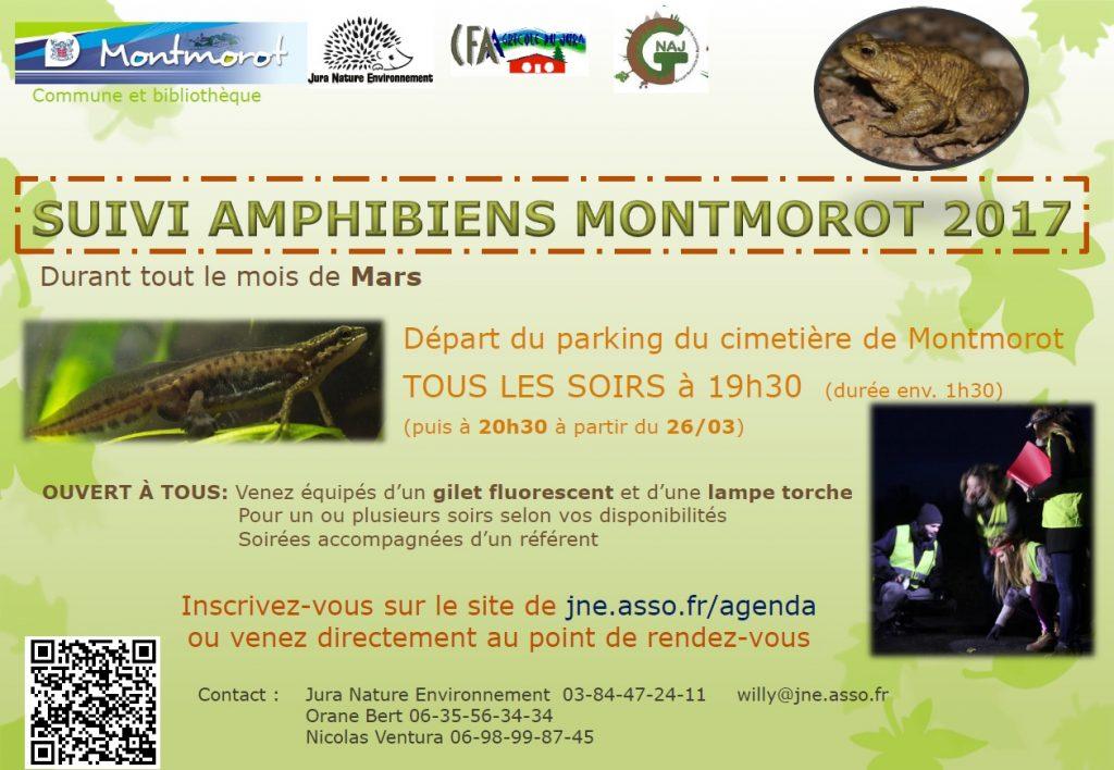 Affiche Suivi amphibien